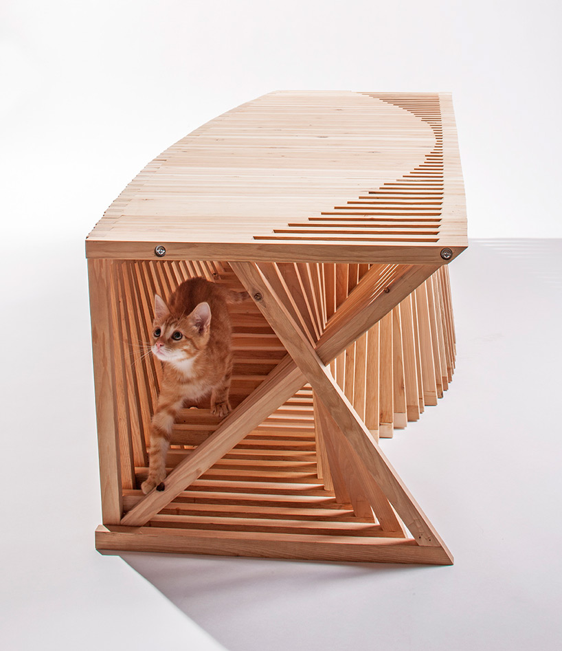 architects-for-animals-cat-shelters-fixnation-designboom-06