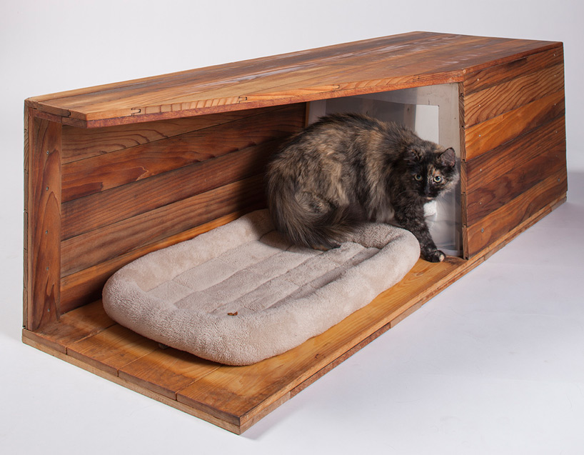 architects-for-animals-cat-shelters-fixnation-designboom-08