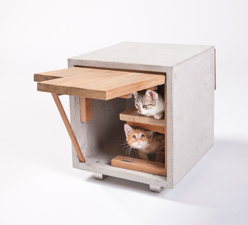 architects-for-animals-cat-shelters-fixnation-designboom-11