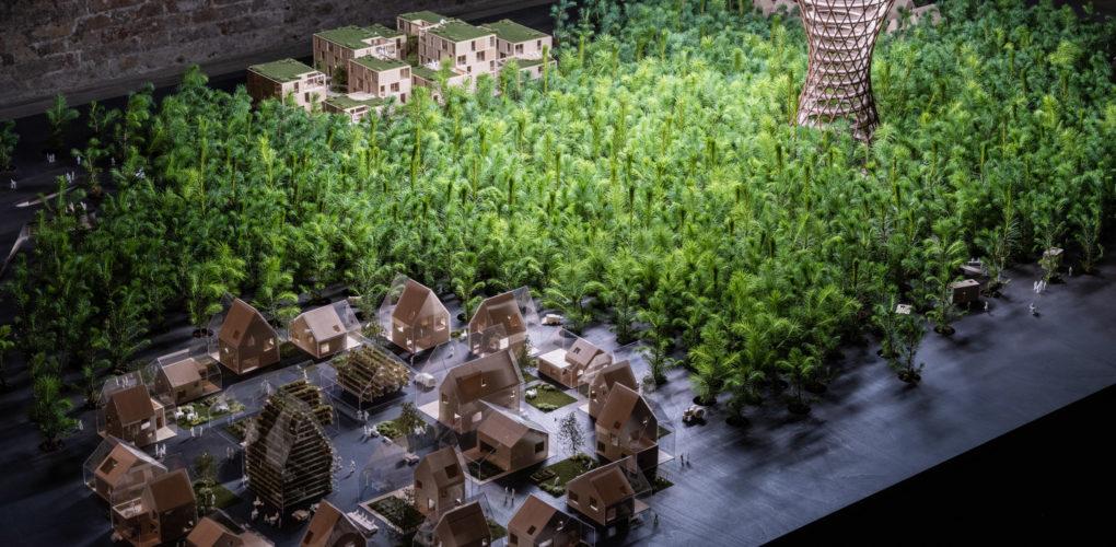 effekt-ego-to-eco-venice-architecture-biennale-1600-trees-installation_dezeen_2364_col_1
